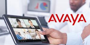 Avaya Boast Equinox and Multi-Tenancy in IP Office Release
