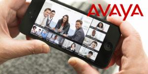 AvayaVideo