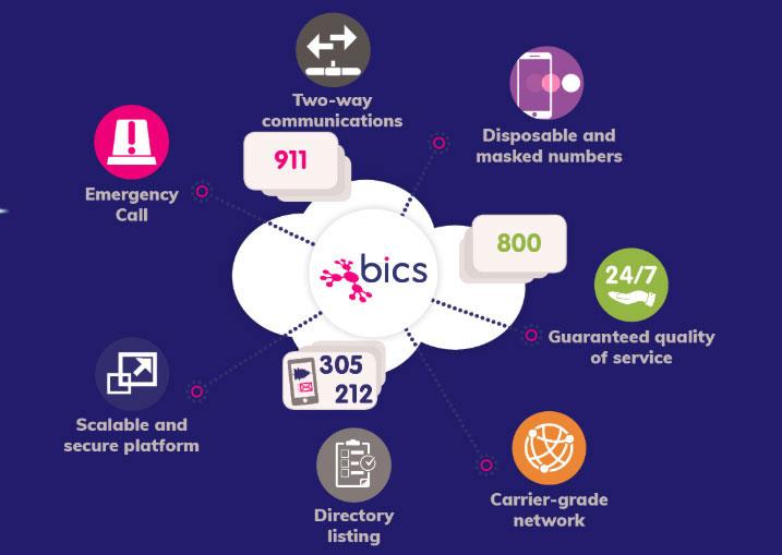 Bics Numbers