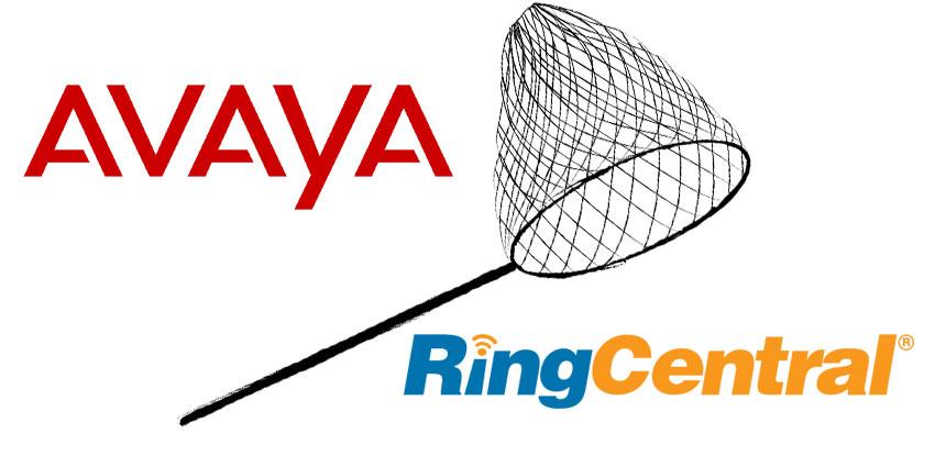 Avaya Pursuing RingCentral