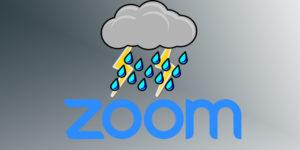 ZoomBadTimes